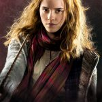 FP2511-HARRY-POTTER-hermione.jpg